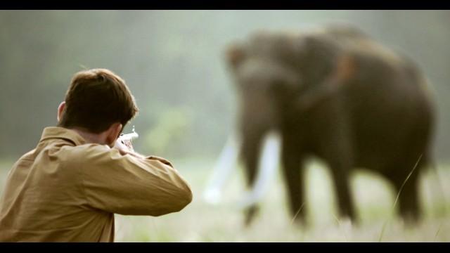 shooting an elephant analysis